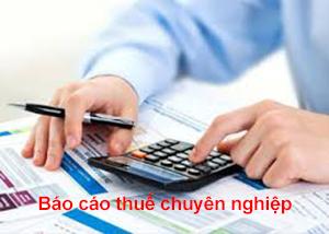 Gói báo cáo thuế chuyên nghiệp